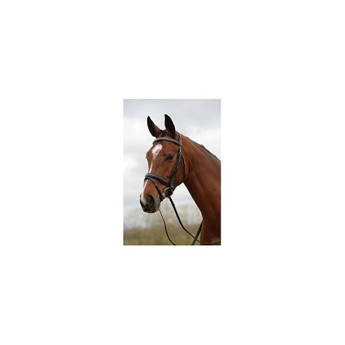 Kincade Padded Crystal Crank Flash Bridle