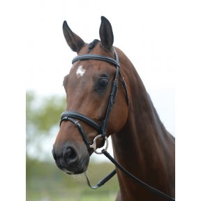 Kincade Flash Bridle