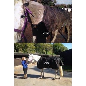 TURNOUT RUG COMBO/WITH NECK WASH